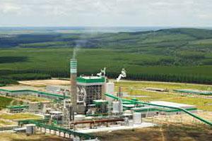 Veracel Celulose divulga edital para contratação de Monitor de Pesquisa Florestal 40