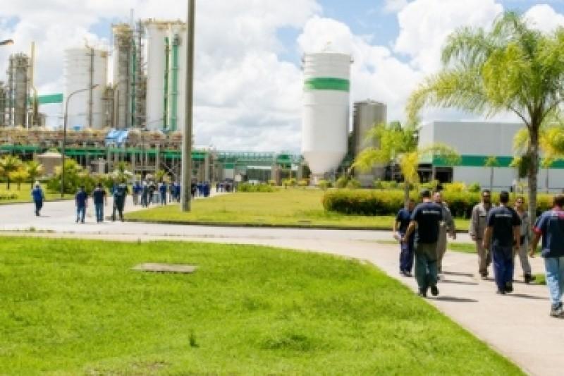 Veracel Celulose divulga edital para contratação de Supervisor de Pátio de Madeira 16