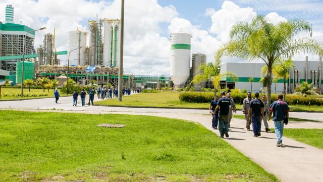 Veracel Celulose divulga edital para contratação de Instrutor Florestal 20