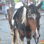 Devinho Novaes leva milhares de foliões ao delírio na 29ª Festa do Cavalo 86