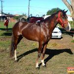 Milhares de cavaleiros e amazonas manteve o legado na 18ª edição da Cavalgada do Boinha 271