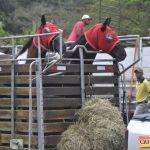 6ª Cavalgada dos Amigos em Pau Brasil foi espetacular 49