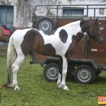 6ª Cavalgada dos Amigos em Pau Brasil foi espetacular 246