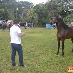 6ª Cavalgada dos Amigos em Pau Brasil foi espetacular 462