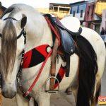 10ª Cavalgada dos Xonadinhos é sucesso de público em Santa Luzia 225