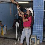 10ª Cavalgada dos Xonadinhos é sucesso de público em Santa Luzia 182