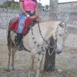 Um espetáculo a 2ª Cavalgada das Mulheres em Canavieiras 450