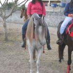 Um espetáculo a 2ª Cavalgada das Mulheres em Canavieiras 538