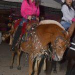 Um espetáculo a 2ª Cavalgada das Mulheres em Canavieiras 199