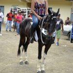 3ª Grande Cavalgada de Jacarecy atraiu centenas de cavaleiros e amazonas 310