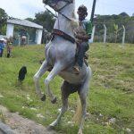 7ª Cavalgada Fazenda São Jorge foi simplesmente fantástica 198
