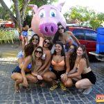 Arraial d'Ajuda: Simplesmente Fantástico o Carna Porco 2019 161