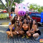 Arraial d'Ajuda: Simplesmente Fantástico o Carna Porco 2019 81