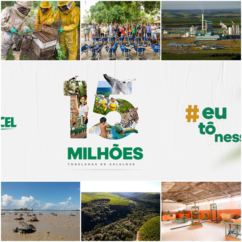 Veracel Celulose celebra 14 anos de operação da fábrica com bons resultados e contribuições para a região 28