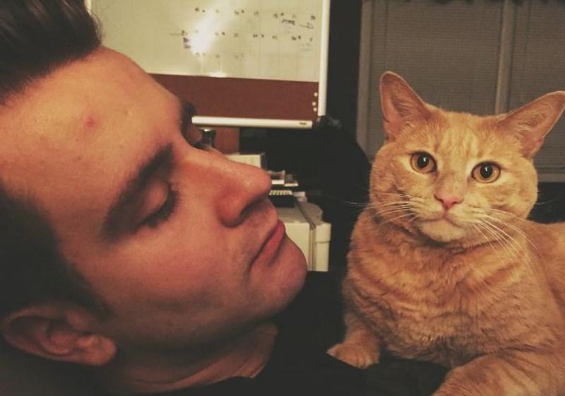 Cientistas criam vacina pra quem é alérgico a gatos 1