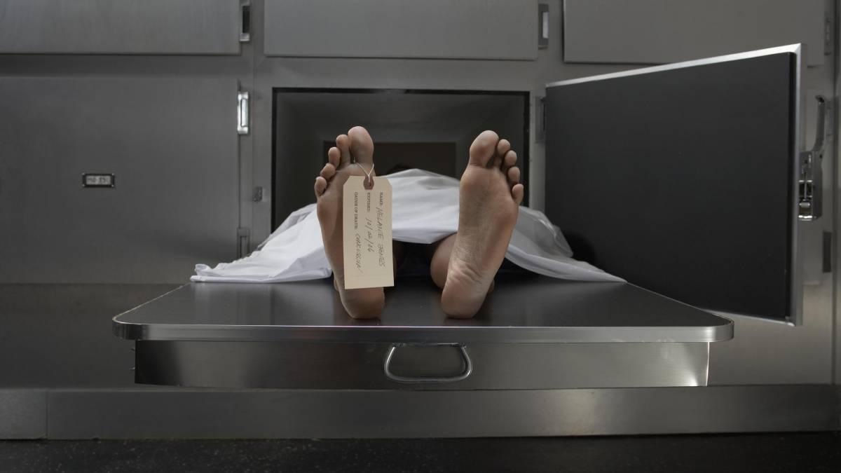 Cientistas descobrem que corpos se movem até um ano após a morte 52