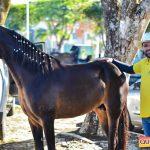 Recorde de público a 6ª edição do Aniversário do Rancho Guimarães 9