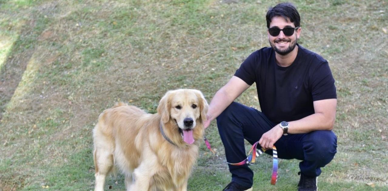 Nova lei prevê multa de até R$ 684 para quem atropelar e maltratar cachorros 1