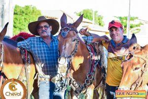 7º Encontro Amigos do Cavalo de Canavieiras foi um sucesso 12