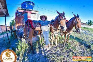 7º Encontro Amigos do Cavalo de Canavieiras foi um sucesso 14