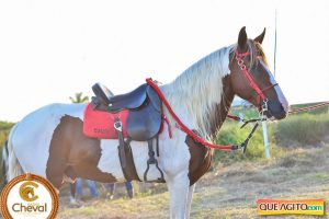 7º Encontro Amigos do Cavalo de Canavieiras foi um sucesso 30