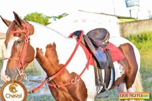 7º Encontro Amigos do Cavalo de Canavieiras foi um sucesso 31