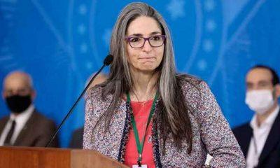 Médica de Porto Seguro diz que está à disposição para disputar o governo da Bahia 15