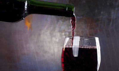 Cientistas descobrem que o tanino do vinho combate Covid-19. Entenda 18