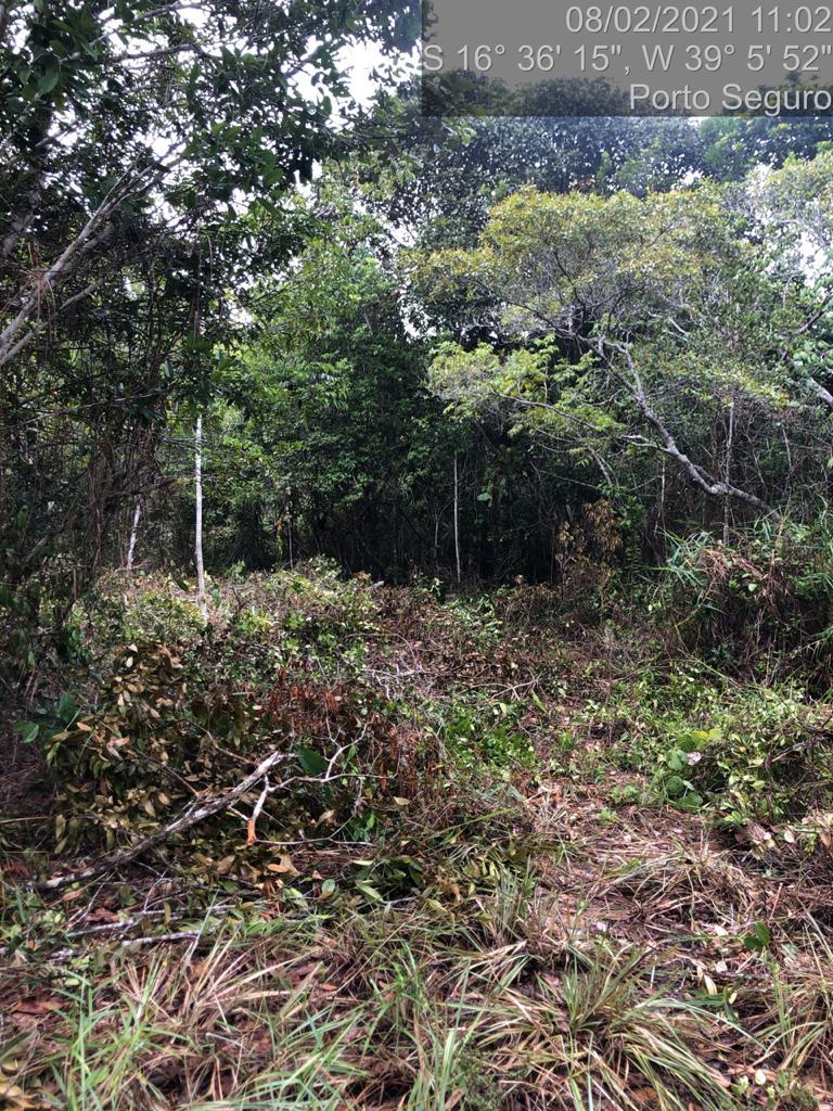 Secretaria de Meio Ambiente de Porto Seguro, está atuando com foco no levantamento dos locais públicos e florestais em todo o território do município 26