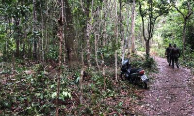 Secretaria de Meio Ambiente de Porto Seguro, está atuando com foco no levantamento dos locais públicos e florestais em todo o território do município 52