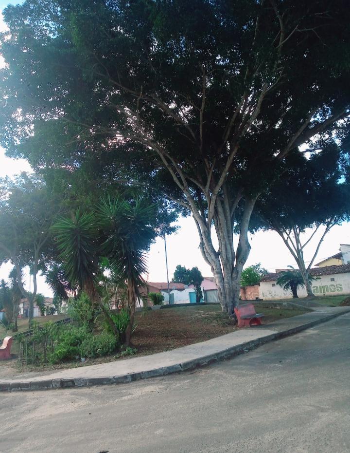 Eunápolis: Vereador Adeilson do Açougue fiscaliza a requalificação da Praça do Minas Gerais 17