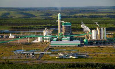 Veracel Celulose está entre as 100 Melhores empresas do Agronegócio 21
