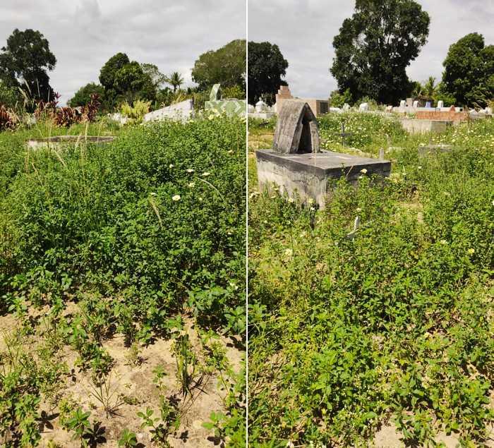 Prefeitura de Eunápolis inicia restauração Cemitério da Saudade, no Sapucaeira 22