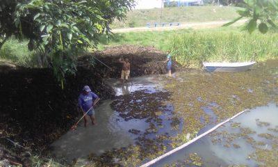 Começa a operação de limpeza na lagoa do Dinah Borges, em Eunápolis 16