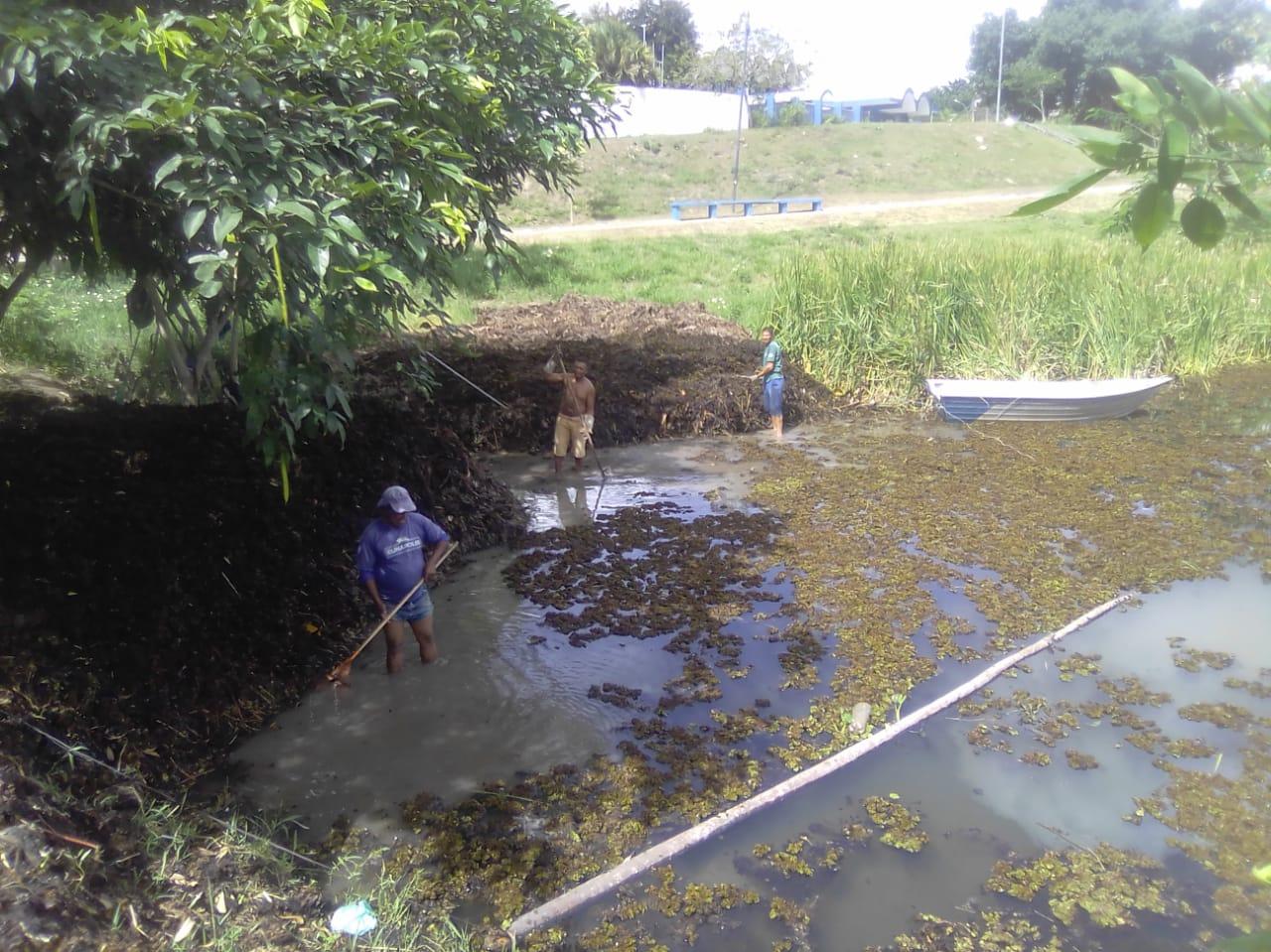 Começa a operação de limpeza na lagoa do Dinah Borges, em Eunápolis 22