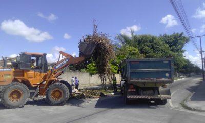 Eunápolis promove remoção de entulho e limpeza nos bairros Antares, Dinah Borges, Paquetá e Sapucaeira 1