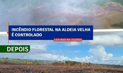 Incêndio florestal na Aldeia Velha é controlado 16