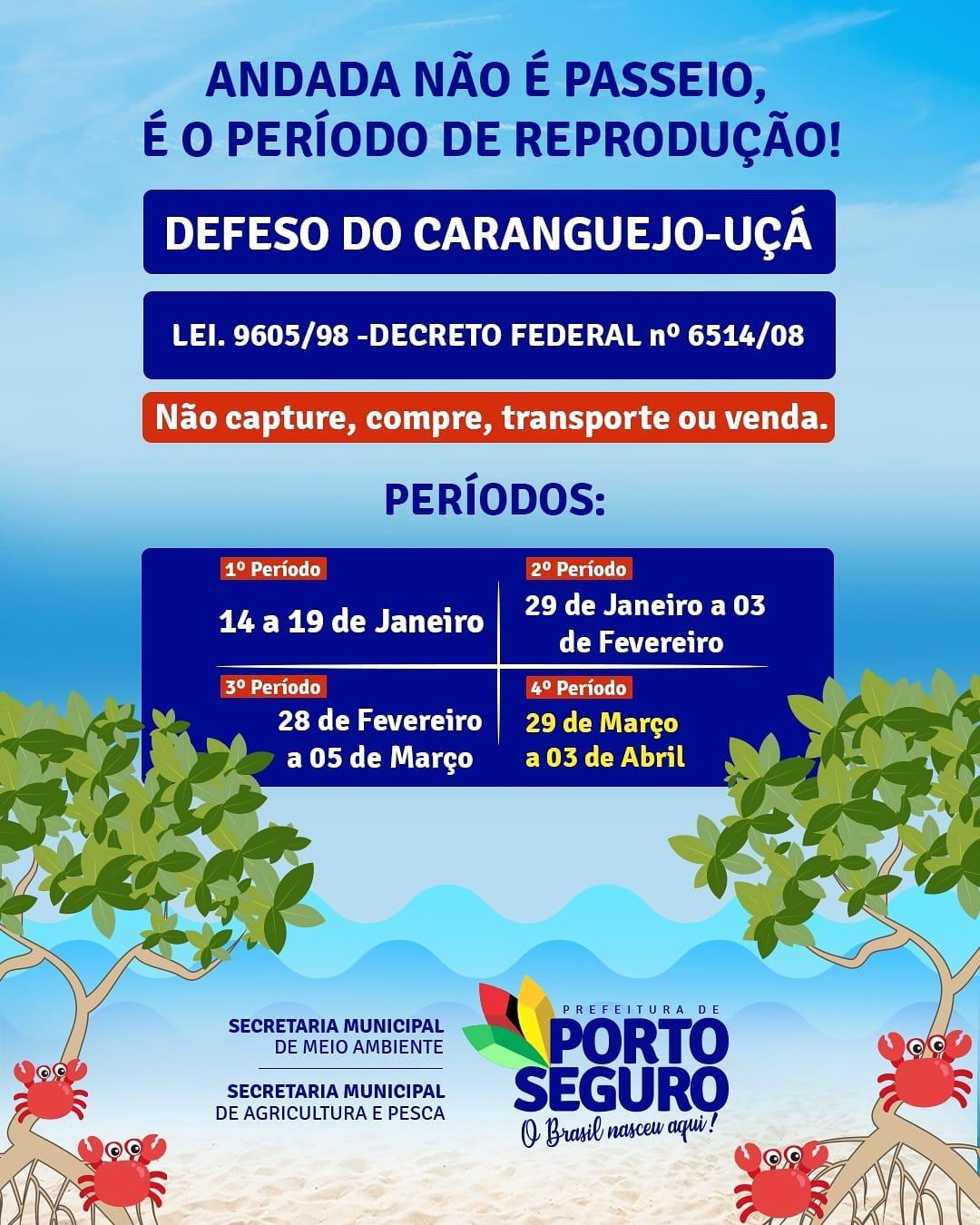 Secretaria de Meio Ambiente alerta para período do defeso em Porto Seguro 23