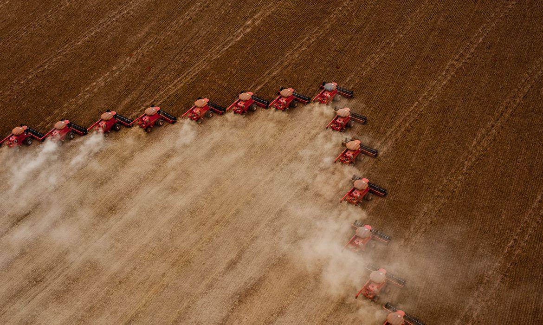 Embrapa: Brasil será maior exportador de grãos do mundo em cinco anos 20