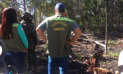 Secretaria de Meio Ambiente coíbe desmatamento, invasões e construções irregulares 4