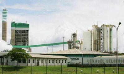 Veracel Celulose participa do lançamento do Fundo Ambiental Sul Baiano 19