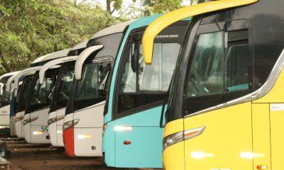 Transporte intermunicipal na Bahia será suspenso três dias antes e depois do São João 16