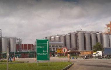 'Vai chegar o dia que teremos que fechar fábricas de cerveja na BA', lamenta Vilas-Boas 40