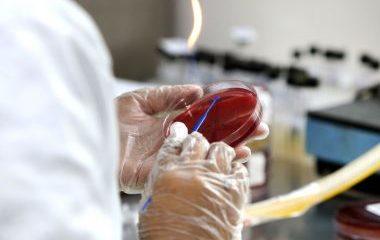 São Paulo confirma primeiro caso de variante indiana do coronavírus 54