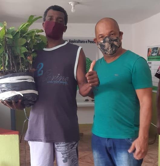 ITACARÉ: PREFEITURA DISTRIBUI MUDAS DE CACAU PARA AGRICULTORES FAMILIARES 18