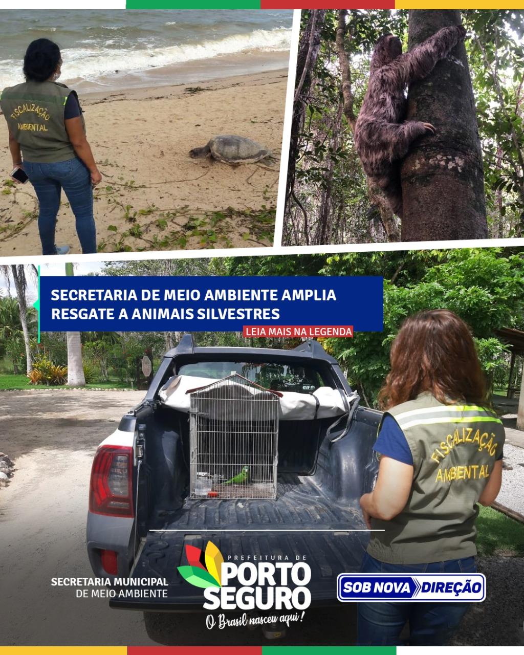 Secretaria de Meio ambiente amplia resgate a animais silvestres 18