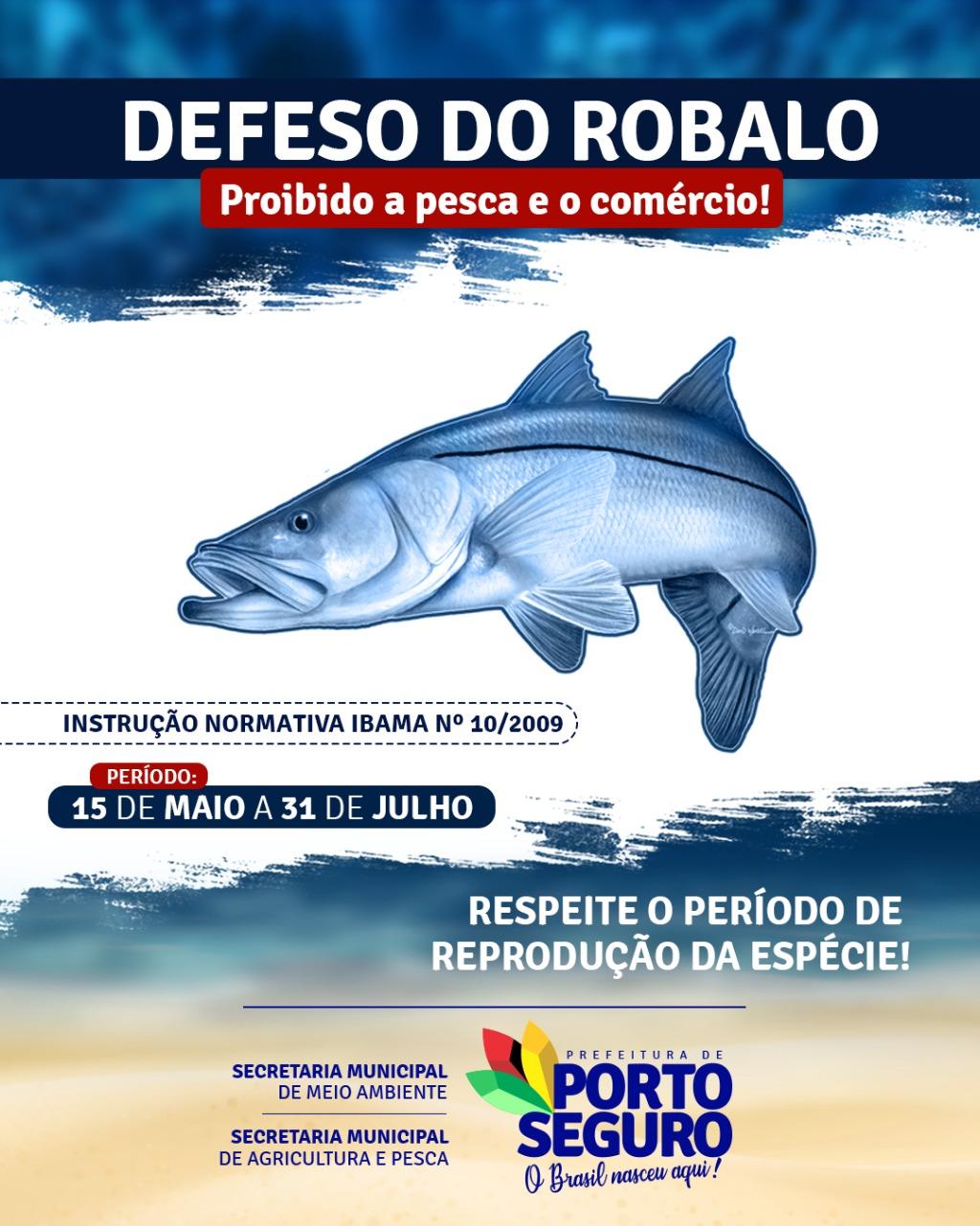 Defeso do Robalo: pesca será liberada após 31 de julho 18