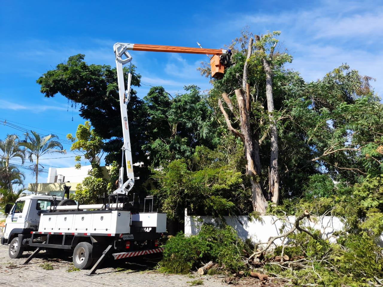 Prefeitura faz poda especial em árvores nas imediações do Hospital de Covid 24