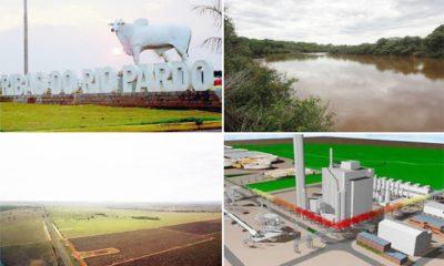 Suzano confirma início de preparação da infraestrutura para instalação da 3ª fábrica em MS 39