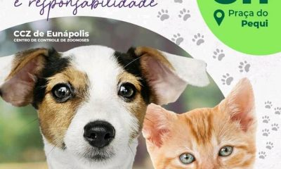 Sexta-feira, 18 de junho, o CCZ estará realizando a 1ª Feira de Adoção de Cães e Gatos de Eunápolis em 2021 110